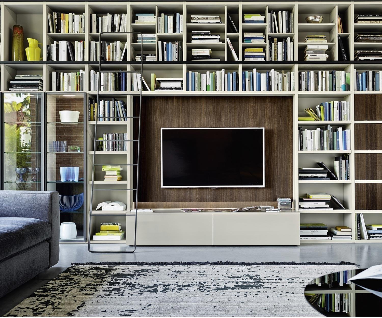 livitalia b cherregal mit leiter c60. Black Bedroom Furniture Sets. Home Design Ideas